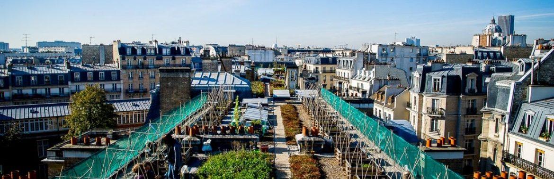Agriculture urbaine sur les toits de Paris